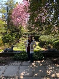 Dumbarton Oaks in DC