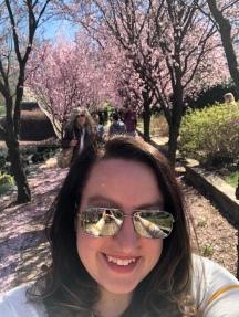 Cherry Blossoms @ Dunbarton Oaks