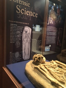 JR - the first set of remains uncovered.